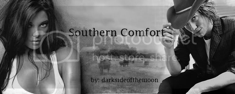 southerncomfort banner